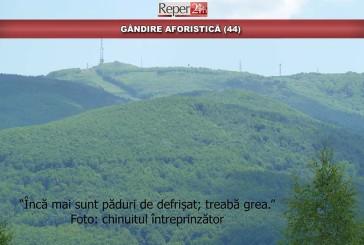 GÂNDIRE AFORISTICĂ (44)
