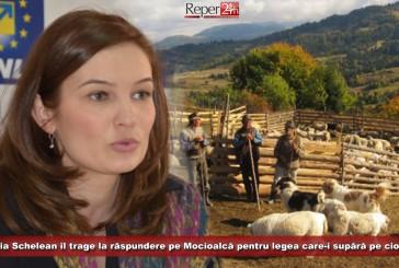 Valeria Schelean îl trage la răspundere pe Mocioalcă pentru legea care-i supără pe ciobani!