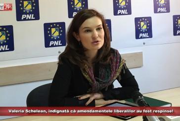 Schelean, indignată că amendamentele liberalilor au fost respinse! Au cerut 70 de milioane pentru Caraș-Severin și nu au primit nimic!