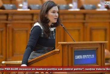 """""""Coaliția PSD-ALDE încearcă să readucă justiția sub control politic"""", acuzădeputatul Valeria Schelean!"""