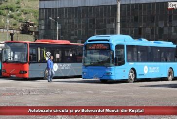 Autobuzele circulă și pe Bulevardul Muncii din Reșița