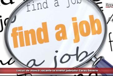 Locuri de muncă vacante la nivelul județului Caraș-Severin