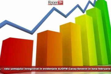 3,55% – rata şomajului înregistrat în evidenţele AJOFM Caraş-Severin în luna februarie 2021