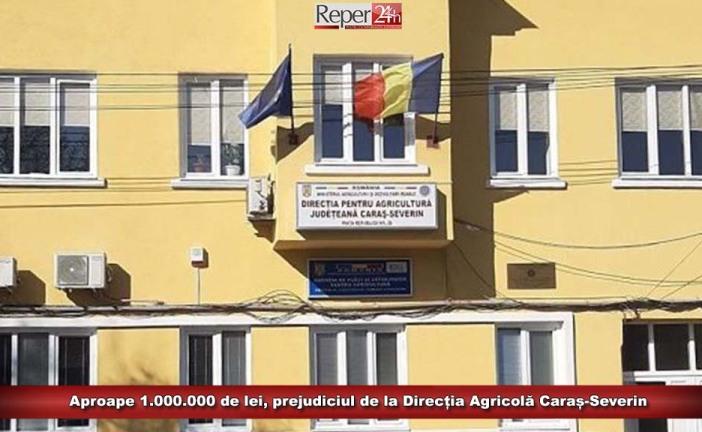 Aproape 1.000.000 de lei, prejudiciul de la Direcția Agricolă Caraș-Severin