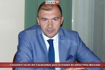 Consilierii locali din Caransebeș, puși la treabă de edilul Felix Borcean