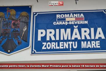 Locuințe pentru tineri, la Zorlențu Mare! Primăria pune la bătaie 18 hectare de teren!