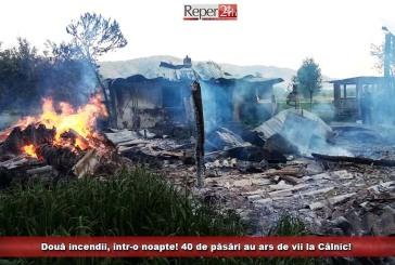 Două incendii, într-o noapte! 40 de păsări au ars de vii la Câlnic!